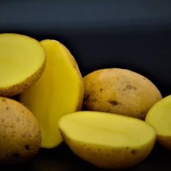 Pommes de terres Grenailles